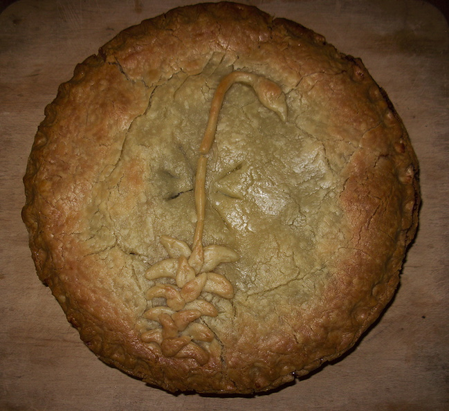 pie-with-bryum-pie-art-2011-12-26-IMG_0273.jpg