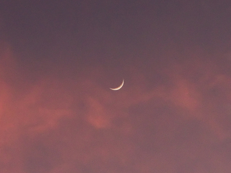 crescent-moon-sunset-2011-01-07-IMG_6881.jpg