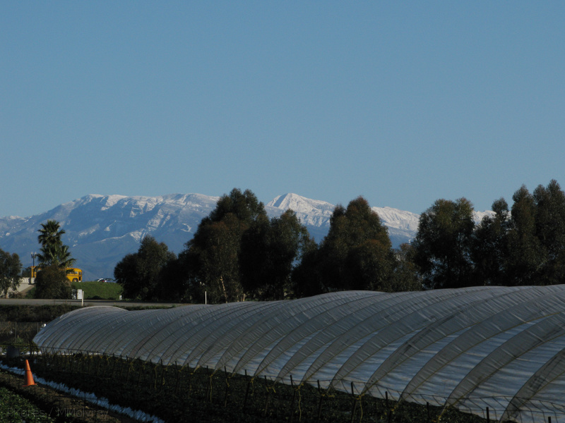 snow-Ventura-Santa-Ynez-Mts-and-farms-02-18-IMG 1775